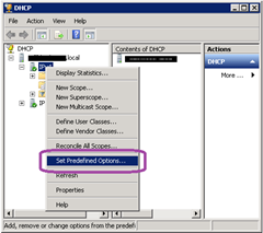 DHCP-SetPredefOptions