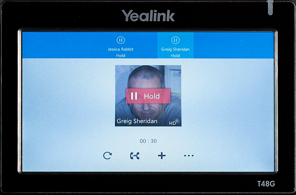 how to put a skype call on hold
